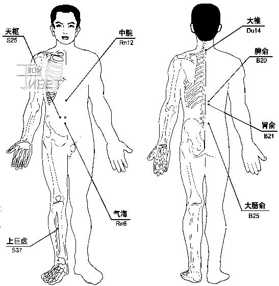 Схема лечения магнито-вакуумными массажными банками острого гастроэнтерита, гастроптоза.