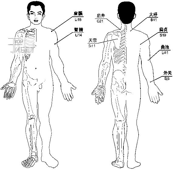 Схема лечения магнито-вакуумными массажными банками плечелопаточного периартрита, интоксикации вследствие укуса змеи...